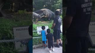Dinosaurs land part 1