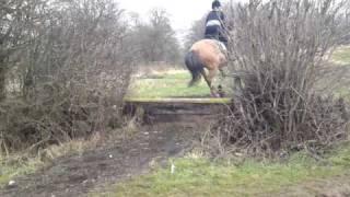 cross country step up jump Thumbnail