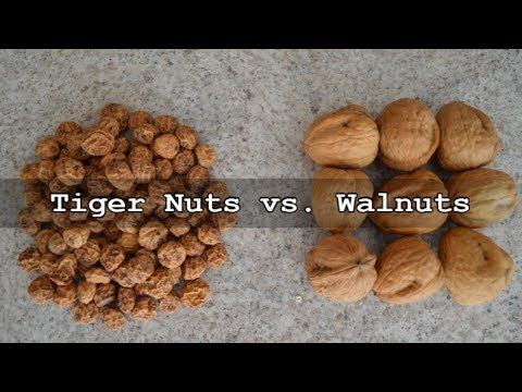 Why Do Tiger Nuts Beat Walnuts?: Culinary Questions with Kimberly