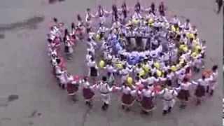 Hora Unirii flash mob LTPA M.Berezovschi