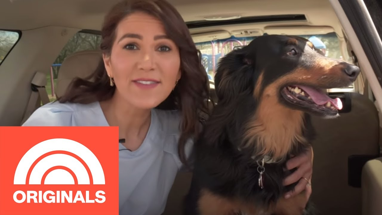 Get It Together: 5 Tricks To Clean Your Car (And Keep It Clean) Without Breaking A Sweat | TODAY