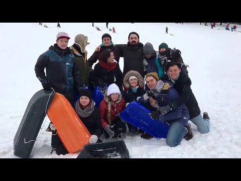 Sledding trip with Cheapsleep team @helsinki 大家一起来滑雪