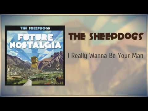 The Sheepdogs I Really Wanna Be Your Man