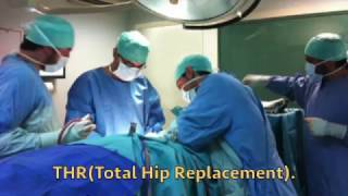 Total Hip Replacement (THR) in dogs with KYON implants.