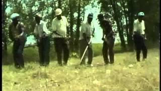 Joe Savage, Walter Brown, and friends: Take This Hammer (1978)