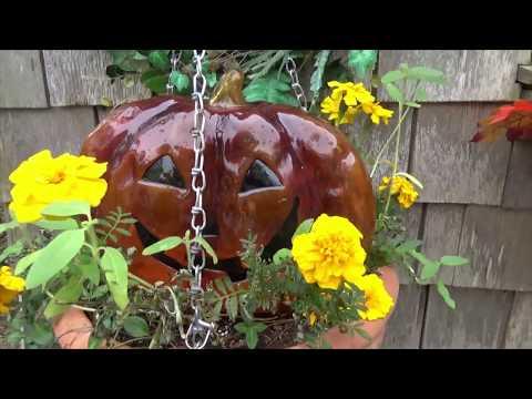 Maine Cottage Garden in Autumn