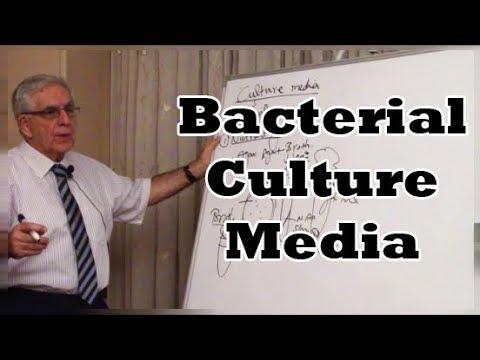 Bacterial Culture Media - (مزارع البكتريا (المستنبتات