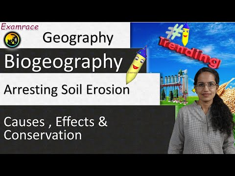 Arresting Soil Erosion - Visualizing its Causes , Effects and Conservation