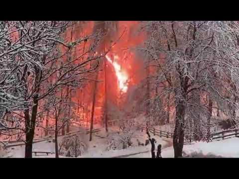 Cavo dell'alta tensione incendia il bosco