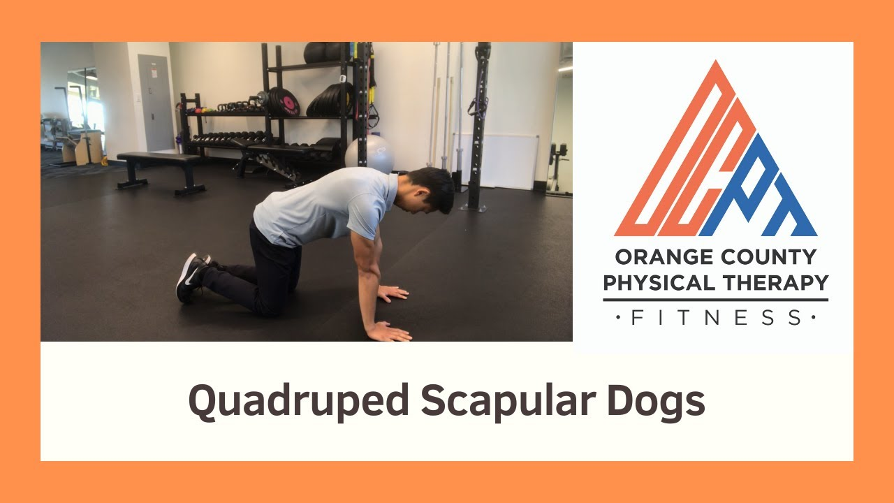 Serratus Push Ups (Orange County Physical Therapy) - YouTube