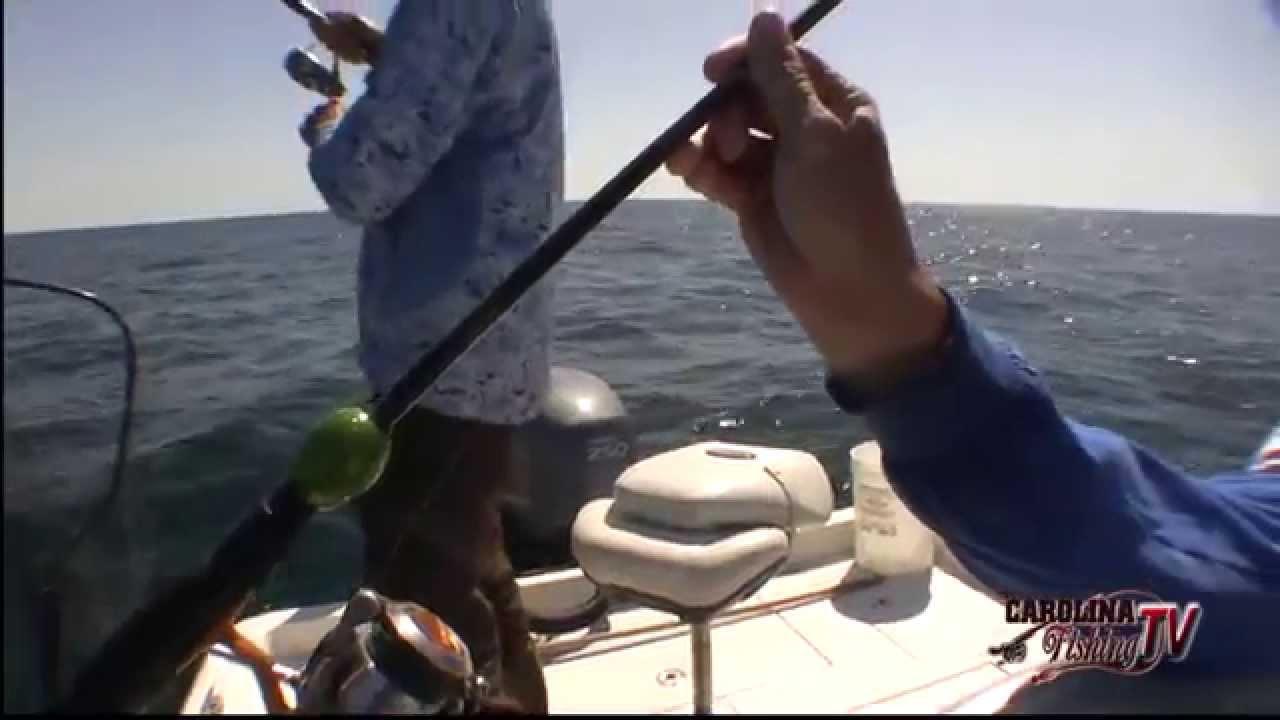 Carolina fishing tv season 3 17 nearshore false for Carolina fishing tv