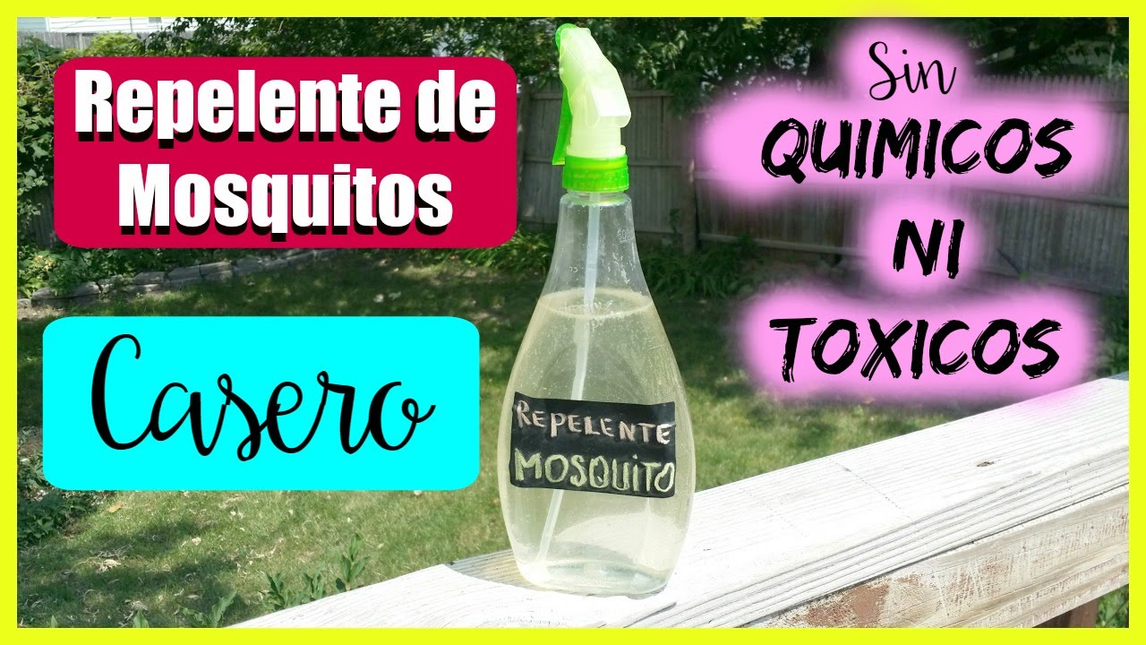 Como hacer repelente para mosquitos y zancudos sin toxicos - Como ahuyentar los mosquitos ...