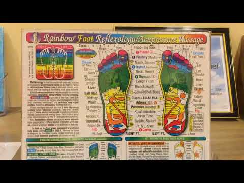 Foot Reflexology Zones explained by Ellie