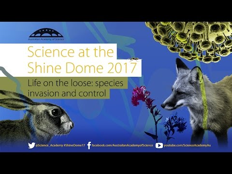 Life on the Loose: species invasion and control