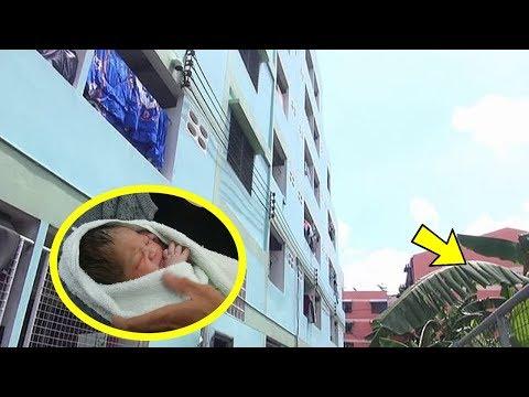 Dilempar dari Lantai 5, Bayi Baru Lahir Selamat Berkat Pohon Pisang, Ibunya Diduga Masih Remaja Mp3