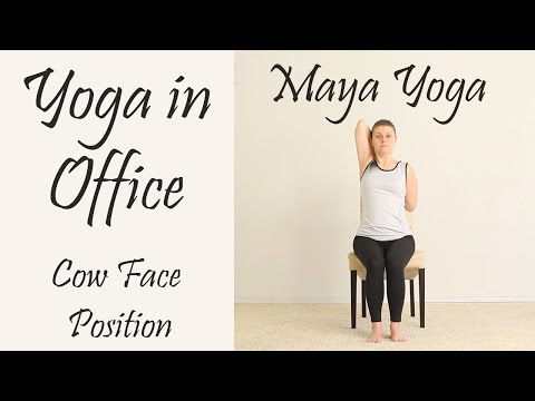 Chair Yoga. Cow Face Position. How to practice yoga in your office.
