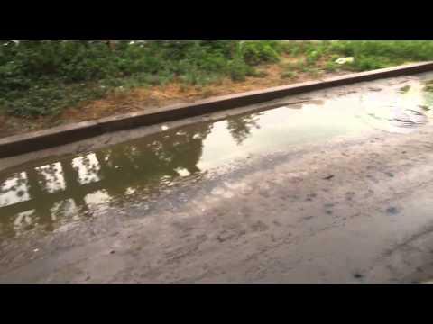 Жители Волгограда пребывают в «оазисе» из грязи, водорослей и тины из-за порыва трубы
