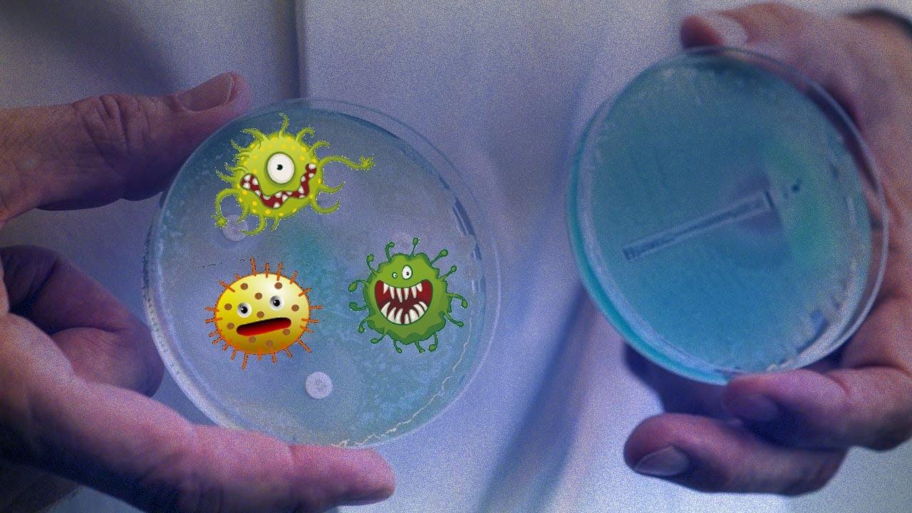 Eis Bakterien