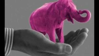 Jaqee  Pink drunken elephant.