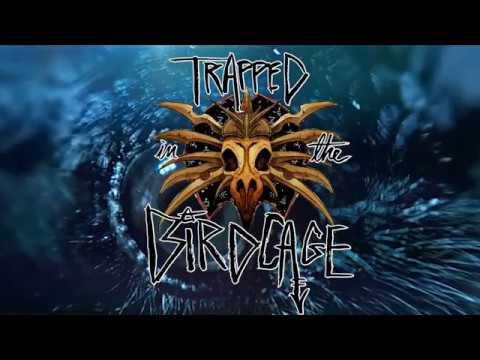 Episode 1 - Trapped in the Birdcage