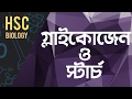 ০৭২) অধ্যায় ৩ - কোষ রসায়ন : Glycogen & Starch [HSC | Admission]
