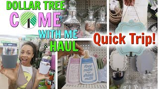 come with me to dollar tree new items popular finds