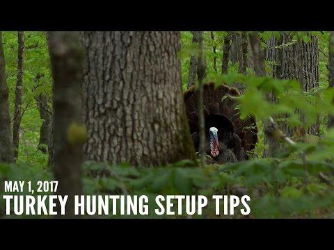 Turkey Hunter Shot on Video - Proper Setup Tips for Turkeys