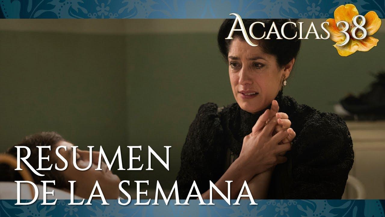 Acacias 38 capitulo 972