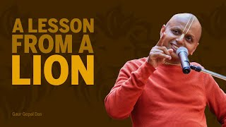 A lesson from a lion! by Gaur Gopal Das