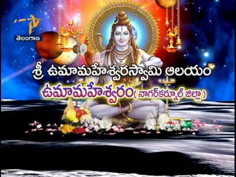Sri Uma Maheswara Swamy Temple | Umamaheshwaram | Nagarkurnool |  Teerthayatra |  26th December 2016