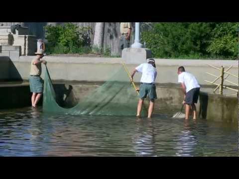 Fish Stocking At Delaware Lake | Indiana DNR