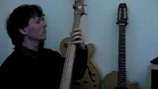 Ergo 4 String Electric Upright Bass