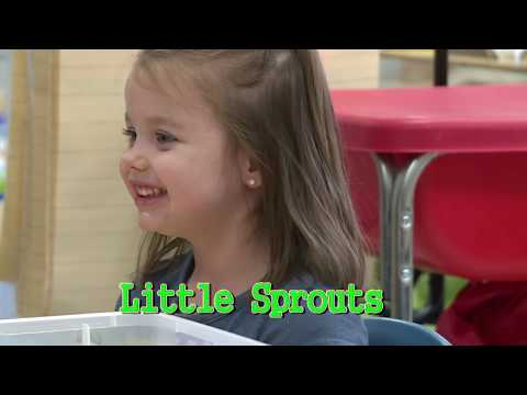 Murfreesboro City Schools Daycare Service (Newsbreak)