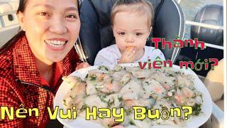 Vlog 629 ll Đĩa Bánh Bột Lọc Bự Chà Bá Lửa, Nhà Có Thành Viên Mới