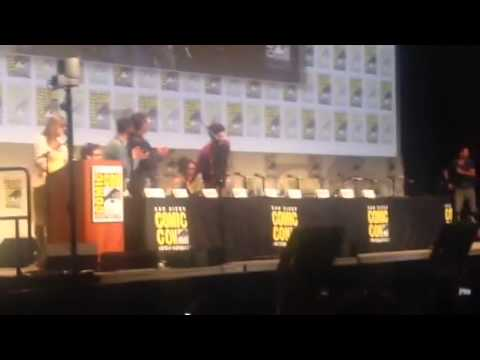 The Cast Of The Flash Introduced At Comic-Con #SDCC - Zennie62