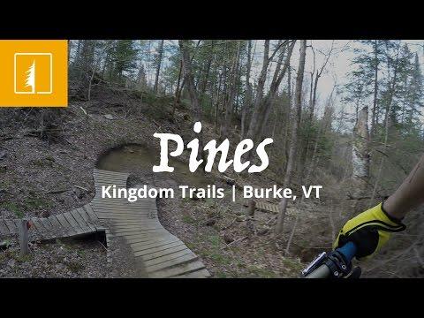 Pines | Kingdom Trails | Burke, VT
