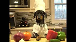 Crusoe Hopes You Join us November 18th for the Chili Cook-off!