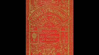 Jules Verne Delfín
