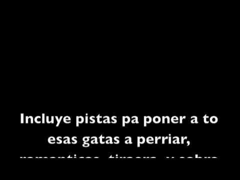 Virtual Diva Don Omar