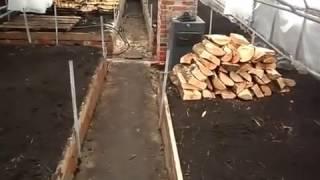 видео Выращивание тюльпанов в теплице