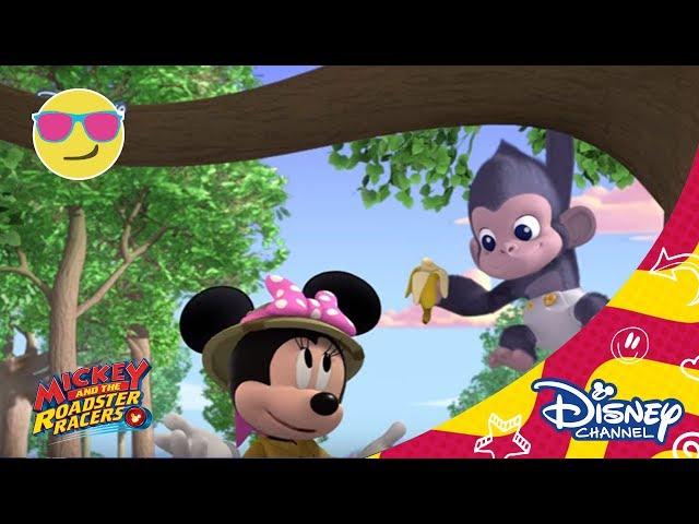 Mickey és az autóversenyzők: A Segélycsapat és a gorilla!