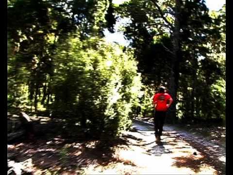 Lonely Camper Moreton Island short film