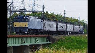 EF64 37+旧型客車+EF65 501 両毛線団体臨時列車@2019.4.21