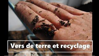Lombriculture et recyclage des déchets, retour d'expérience, transformation en compost par les vers.
