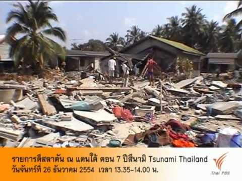 Стоит ли опасаться цунами в Тайланде? — ALOHA FAMILY