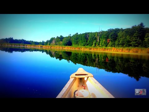 🍃 Canoeing on Glass - Solo Trip - Relaxing River Paddle in HD - Click Subscribe :)