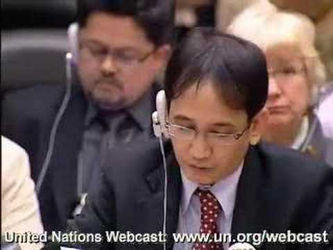 Lawyer addresses UN on human rights issues