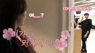 [스트레이 키즈 방찬] 갑자기 등장하는 방찬 모음 / Stray Kids Bang Chan's sudden appearance compilation