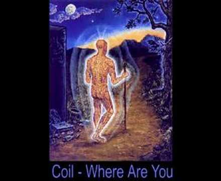 coil - where are you