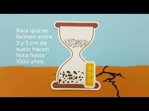 Detengamos la erosión del suelo, mantegamos el suelo en su lugar